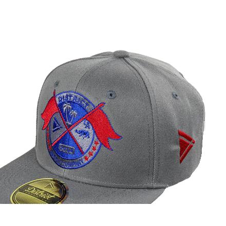 District Cap Seal-0